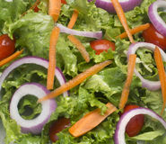 Salad plate closeup Stock Image
