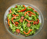 Salad on plate Royalty Free Stock Photos