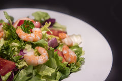 Salad plate with shrimps. Isolated Royalty Free Stock Images