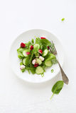 Salad on plate top view Royalty Free Stock Images