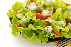 Salad in plate on white Royalty Free Stock Photo