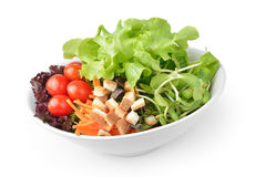 Salad in plate  on white background Royalty Free Stock Images