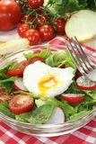 Salad with poached egg and onions Stock Photo