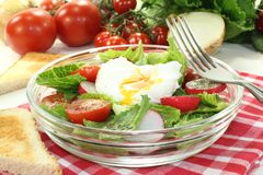Salad with poached egg, onions and radishes Stock Photography