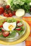 Salad with poached egg and radishes Royalty Free Stock Photos
