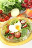 Salad with poached egg and tomatoes Royalty Free Stock Photography