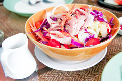Salad. Pork and vegetable salad dish Stock Image