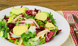 Salad with Potato Chips and Blue Cheese Royalty Free Stock Photography