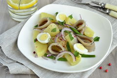 Salad with potatoes, anchovies, quail eggs, beans, onions Stock Photos