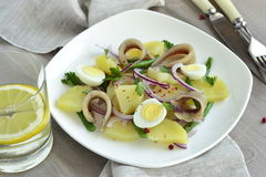 Salad with potatoes, anchovies, quail eggs, beans, onions Stock Photo