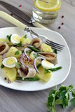 Salad with potatoes, anchovies, quail eggs, beans and onions Stock Photography