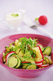 Salad with potatoes and cucumber Royalty Free Stock Photography