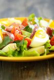 Salad and potatoes, egg and anchovies. Royalty Free Stock Images