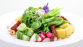 Salad with potatoes, radish and dried tomatoes stock photography