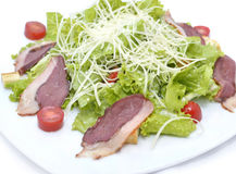 Salad with poultry meat Stock Images