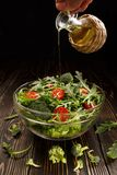 In the salad pour the vegetable oil Stock Images