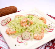 Salad with prawns Royalty Free Stock Photography