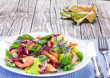 Salad of prawns, mussels and mixed lettuce leaves, close-up Stock Photography