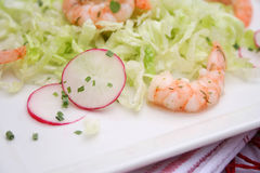 Salad with prawns and radish Royalty Free Stock Photo