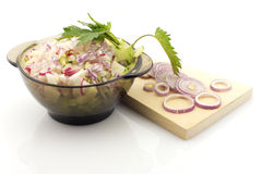 Salad preparation, isolated Stock Images