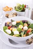 Salad with quail egg Stock Photos