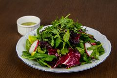 Salad with raddish Royalty Free Stock Images