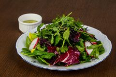 Salad with raddish. And herbs Royalty Free Stock Photo