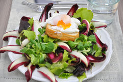 Salad with radicchio and poached eggs Royalty Free Stock Image