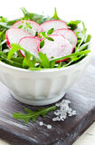 Salad with radish Royalty Free Stock Photo