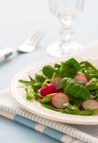 Salad with radish Stock Photo