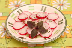 Salad of radish Royalty Free Stock Image