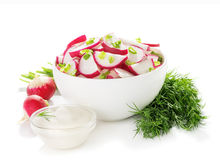 Salad of radish in bowl. Dill, sour cream, ingredients,  isolated on white background Stock Photography