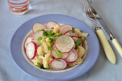 Salad of radish, cauliflower and green onions Stock Photos