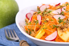 Salad with radish and cress Royalty Free Stock Images