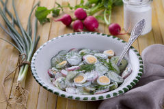 Salad of radish, cucumber and egg. With dill, green onions and sour cream sauce on a wooden surface Stock Photo