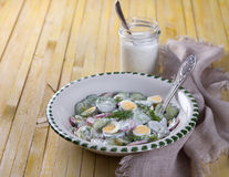 Salad of radish, cucumber and egg. With dill, green onions and sour cream sauce on a wooden surface Stock Image