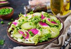 Salad from radish, cucumber and lettuce leaves. Vegan food. Dietary menu Stock Image