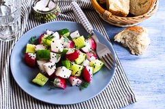 Salad of radish and cucumber Stock Photography