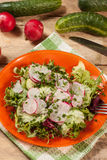 Salad with radish and green cucumber Royalty Free Stock Image