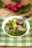 Salad with radish and green cucumber Royalty Free Stock Photos