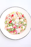 Salad with radish , green onion and egg. In a white plate. white background Stock Image
