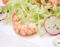 Salad with radish and prawns Royalty Free Stock Images