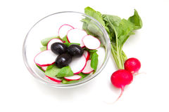 Salad radishes. In bowl on white background Royalty Free Stock Photography
