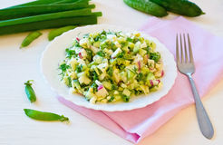Salad with radishes, cucumber greens and sauce. Fork and herbs with onions and cucumbers next Royalty Free Stock Photos