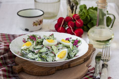 Salad radishes and cucumbers in sour cream sauce. With egg Royalty Free Stock Photos