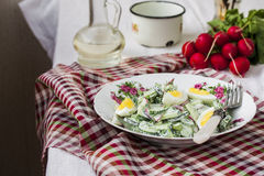 Salad radishes and cucumbers in sour cream sauce. With egg Stock Images