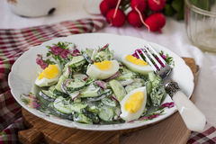 Salad radishes and cucumbers in sour cream sauce. With egg Stock Image