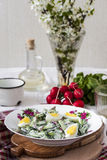 Salad radishes and cucumbers in sour cream sauce Royalty Free Stock Photos