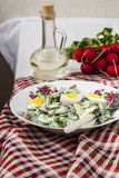 Salad radishes and cucumbers in sour cream sauce Royalty Free Stock Photo