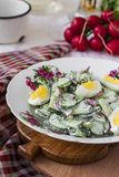 Salad radishes and cucumbers in sour cream sauce. With egg Royalty Free Stock Photo